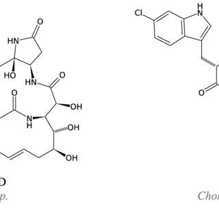 NRPS-PKS biosynthesis of the chondramides [103]. ACP: acyl