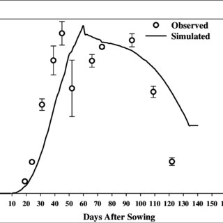 Simulated and observed grain yield after calibration of