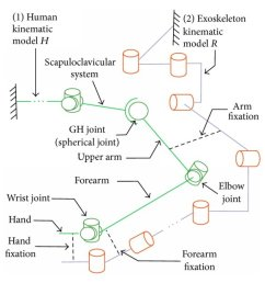 a schematic diagram of the human and exoskeleton kinematic models and their interaction  [ 773 x 1268 Pixel ]