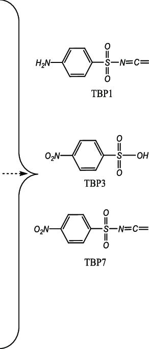 Photocatalytic degradation pathway of SMX (ultrapure water