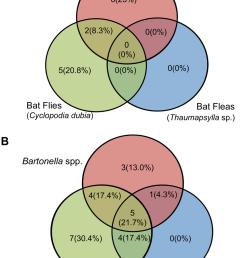 venn diagrams of infection co infection with bat flies bat fleas  [ 850 x 1120 Pixel ]