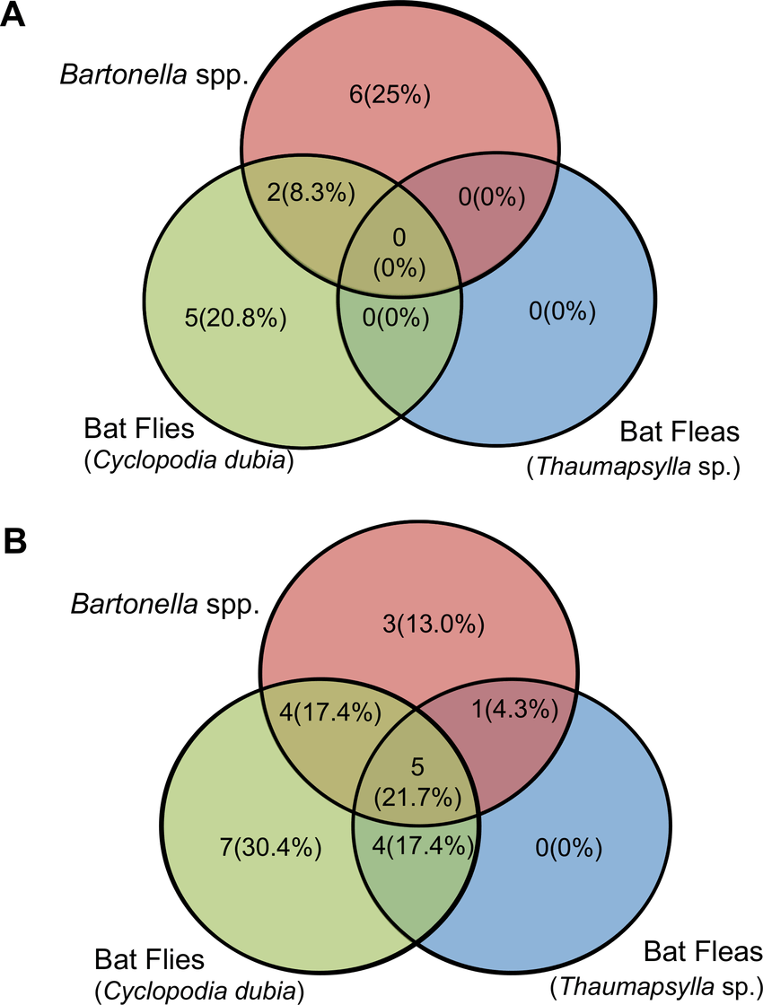 hight resolution of venn diagrams of infection co infection with bat flies bat fleas