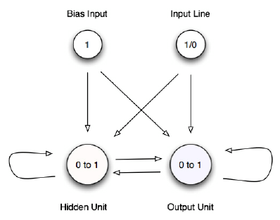 A representation of the structure of a 2 unit networks