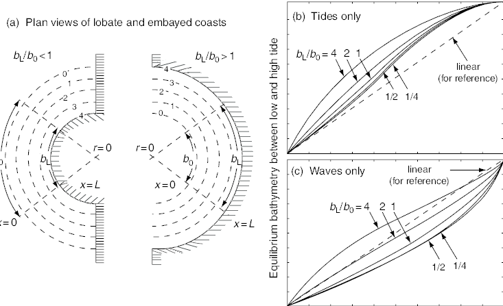 (a) Schematic plan view of a lobate and an embayed tidal