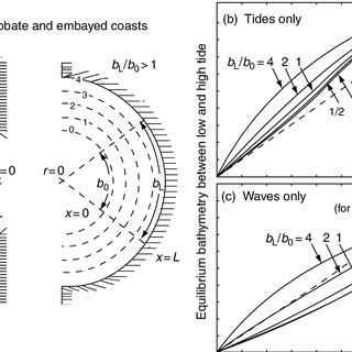 (PDF) Tidal flat morphodynamics: A synthesis
