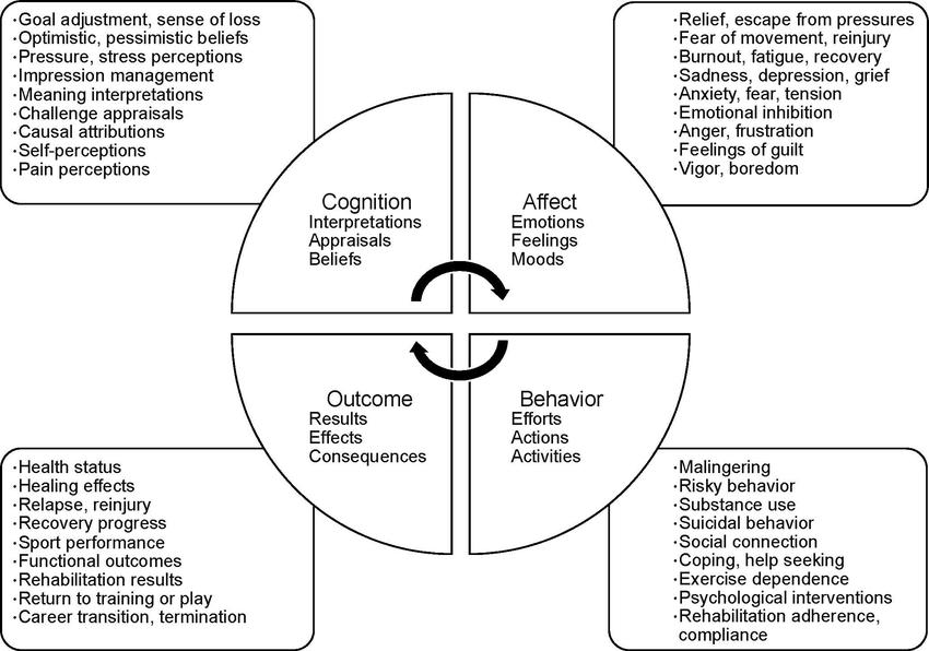The dynamic biopsychosocial model as developed by Wiese