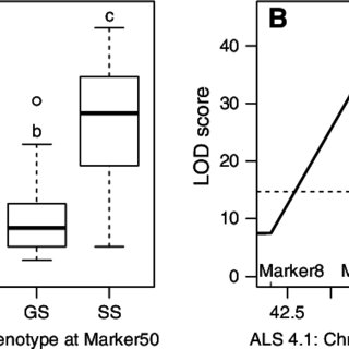 (PDF) Fine-mapping of a major QTL controlling angular leaf