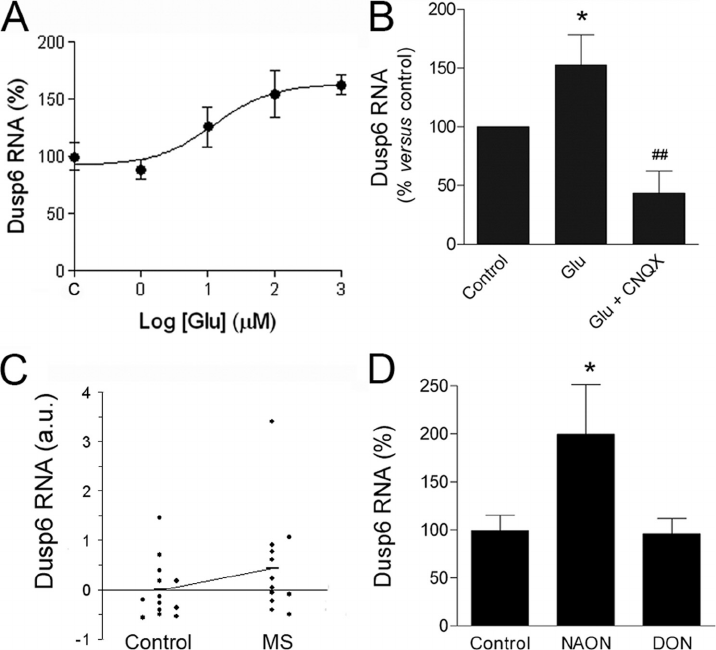 Quantitative PCR analysis of Dusp6 phosphatase RNA