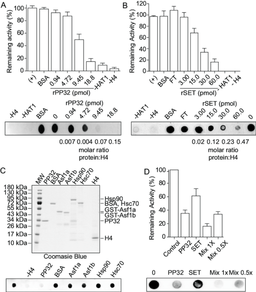 small resolution of pp32 and set taf i proteins block hat1 mediated h4 acetylation in download scientific diagram