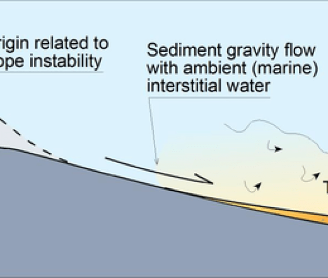 Main Components Of An Intrabasinal Turbidity Current Originated From Slope Destabilization Note The Existence