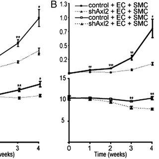 (PDF) The receptor tyrosine kinase Axl controls breast