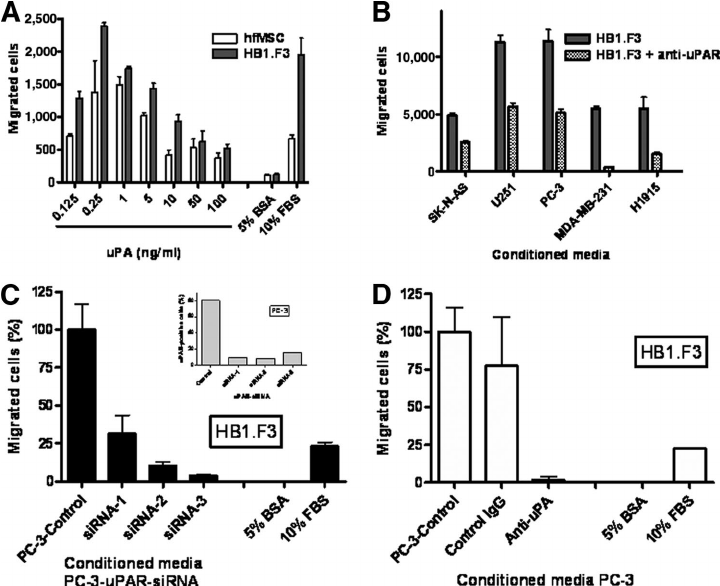Induction of stem cell migration by recombinant uPA and