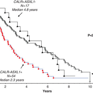 Kaplan–Meier estimates of overall survival in patients of