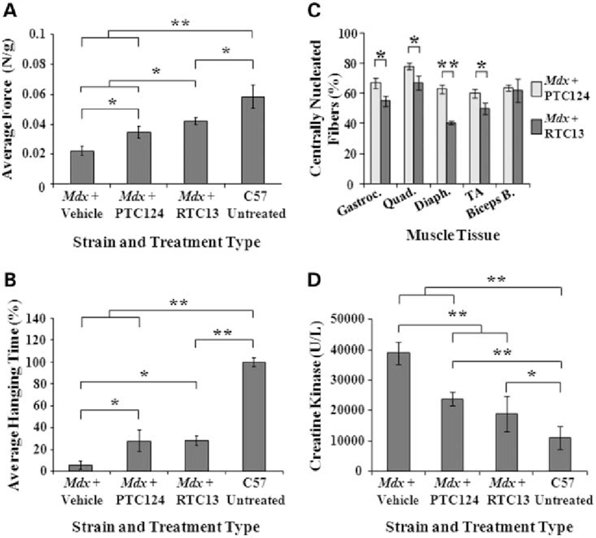 Functional improvement in mdx mice after treatment. (A