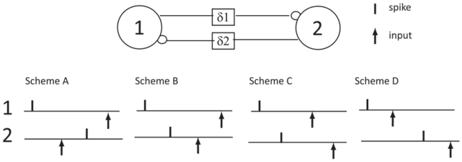 firing patterns the closed loop circuit schematic wiring