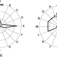 Ultrasound transmission directional characteristics of the