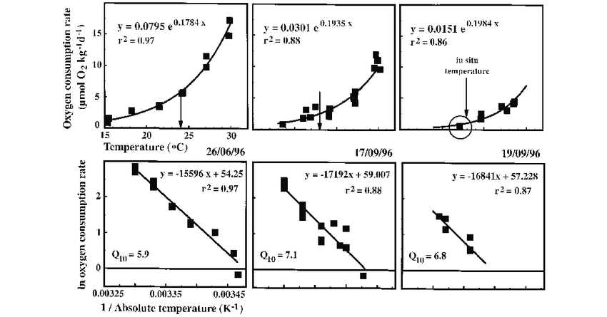 The effect of incubation temperature on the oxygen