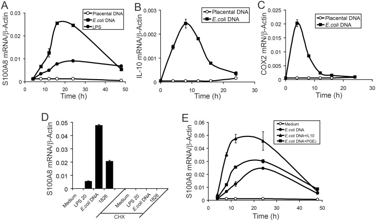 (A–C) RAW264.7 macrophages were treated with 3 µg/ml