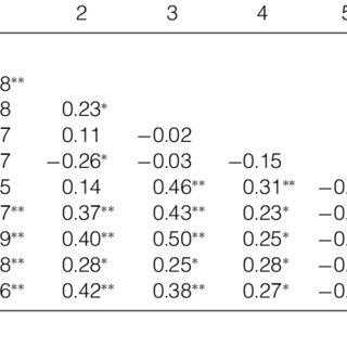 (PDF) Social Capital and Organizational Performance