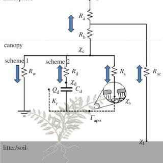 (PDF) Towards a climate-dependent paradigm of ammonia