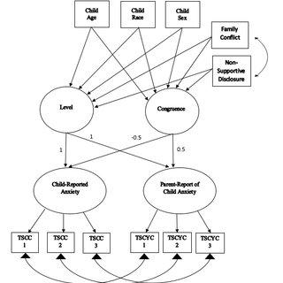 Spaccarelli's (1994) Transactional Model for Understanding