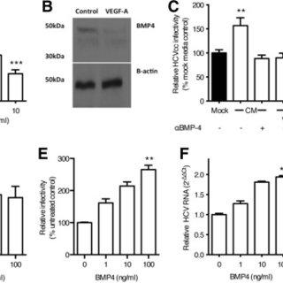 (PDF) Paracrine Signals From Liver Sinusoidal Endothelium
