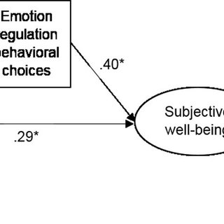 (PDF) Believing Is Doing: Emotion Regulation Beliefs Are