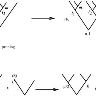 (PDF) Hyperspherical harmonics as Sturmian orbitals in
