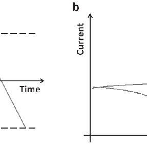 Schematic diagram of a biosensor. A biosensor consists of