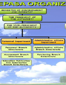 Organization chart of environmental protection agency for special areas epasa also rh researchgate