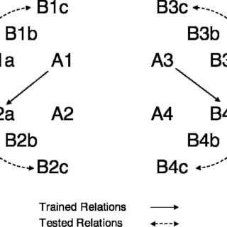 Conditional discriminations and equivalence relations in