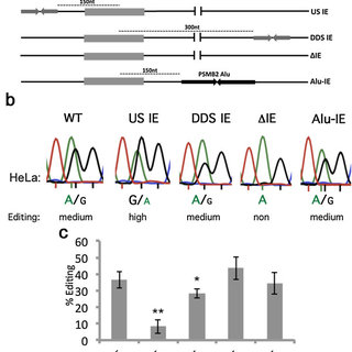 (PDF) Alu elements shape the primate transcriptome by cis