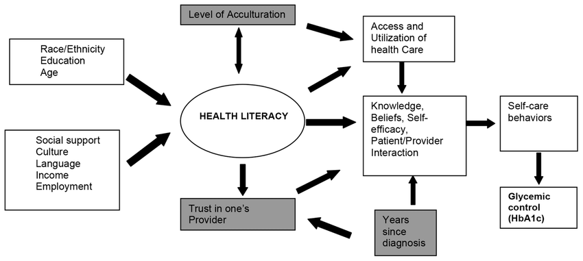 Conceptual model of the relationship between patient