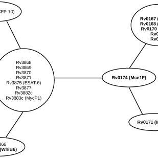 (PDF) Computational Analysis of the ESX-1 Region of