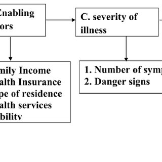 Conceptual framework for health care seeking behavior