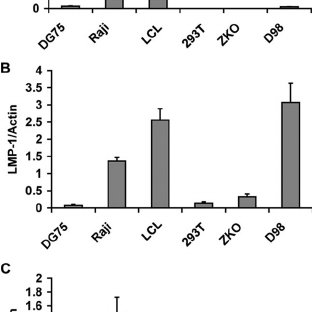 small resolution of fig 2 bic rna levels are highest in ebv positive lcl cells