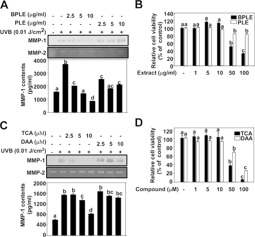 TCA contributes to the inhibitory effect of BPLE on UVB
