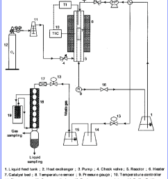 schematic diagram of the catalytic wet oxidation employed to carry out the ammonia oxidation over cu [ 850 x 1016 Pixel ]
