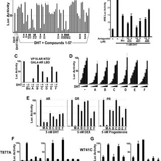 (PDF) In Silico Discovery of Androgen Receptor Antagonists