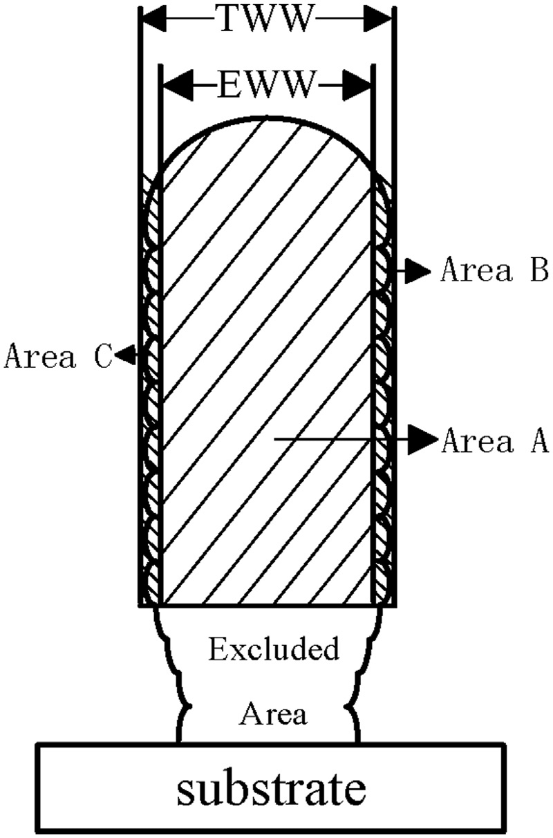medium resolution of schematic of the wall width tww is the total wall width and eww is