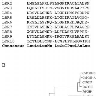 (PDF) The OsFOR1 gene encodes a polygalacturonase