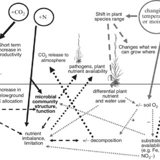 (PDF) How Will Climate Change Impact Soil Microbial