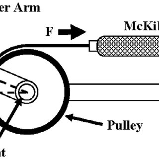 (PDF) Variable stiffness Mckibben muscles with hydraulic