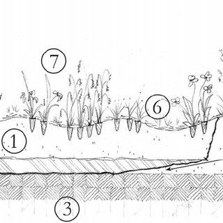 Figure 21. Cross-section of proposed Big Hollow wetland