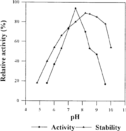 Effect of pH on the activity and stability of the strain