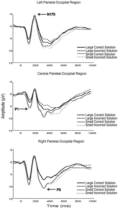 Grand average waveforms of the P1, N170, and P3 components