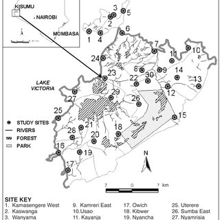 (PDF) Spatial Distribution of Anopheles Gambiae and