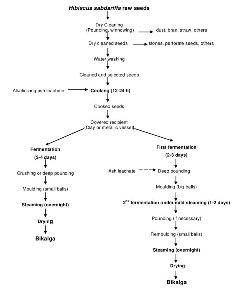 hight resolution of flow diagram of the technology of bikalga