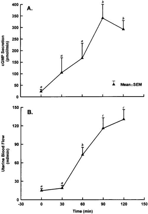 small resolution of pattern of change in uterine secretion of cgmp a and uterine blood flow