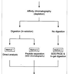 schematic diagram of saliva protein analysis using three different procedures  [ 850 x 1095 Pixel ]